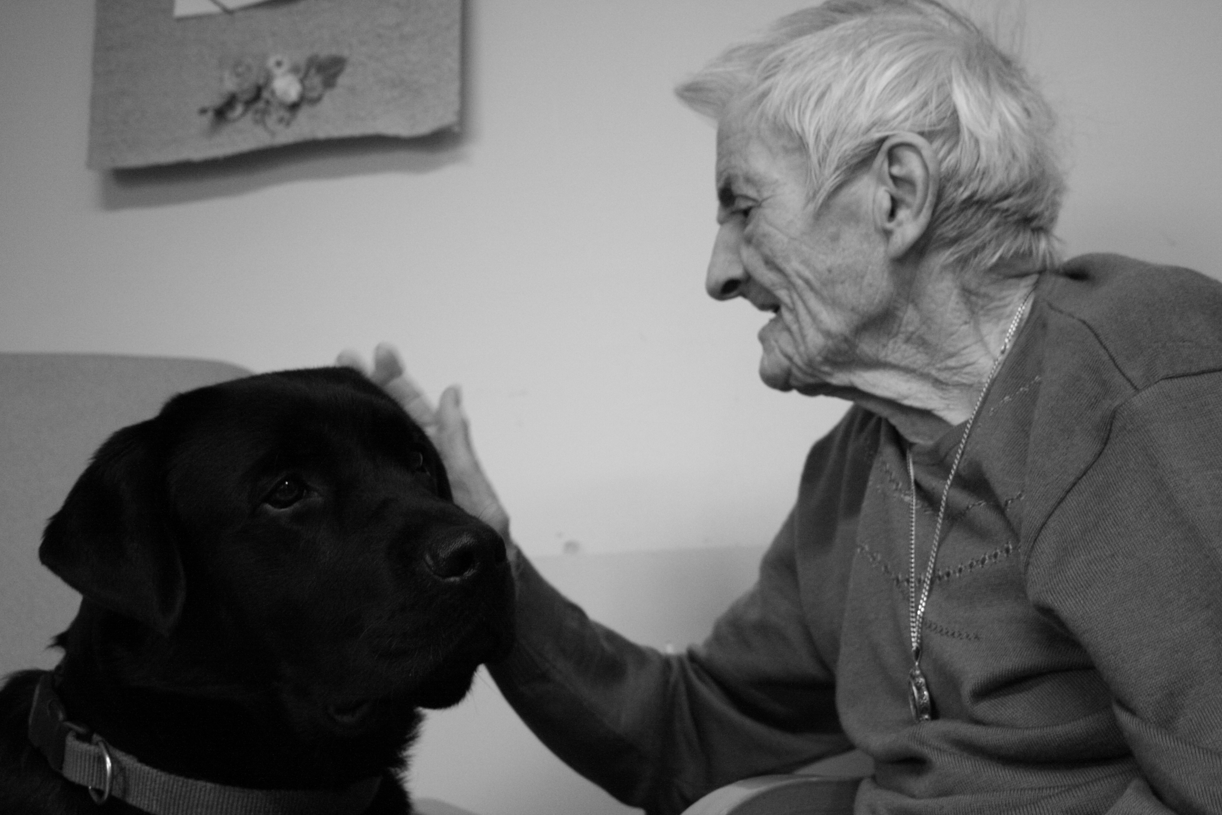 pet therapy 064